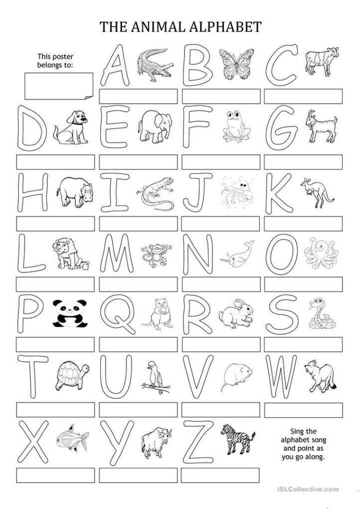 The Animal Alphabet   Poster   English Esl Worksheets Throughout Alphabet Activity Worksheets