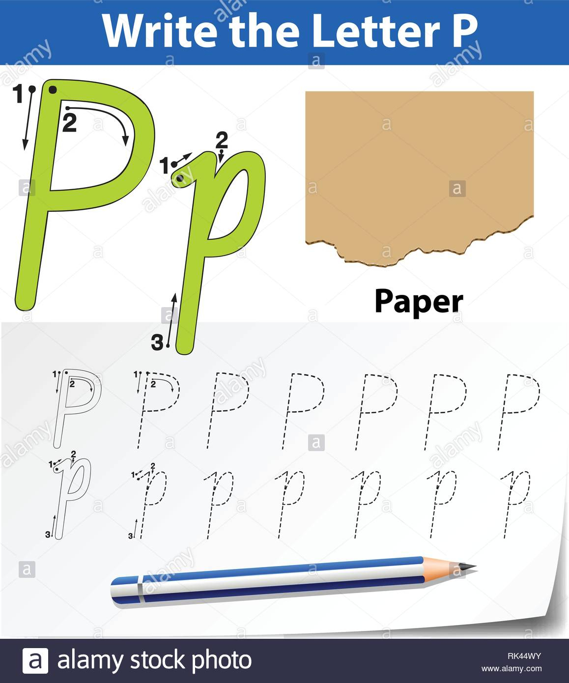 Letter P Tracing Alphabet Worksheets Illustration Stock for Letter P Tracing Paper