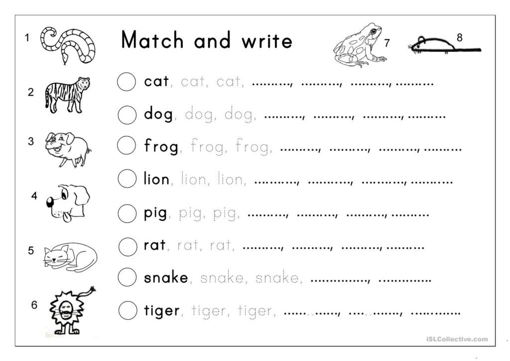 Matching, Letter Tracing, Writing   Animals   English Esl With Name Tracing And Copying Worksheets