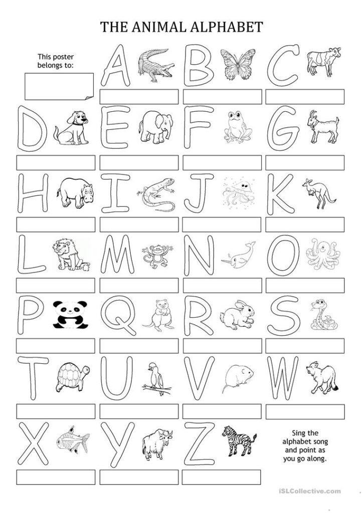 The Animal Alphabet   Poster   English Esl Worksheets For Intended For Alphabet Exercises Elementary