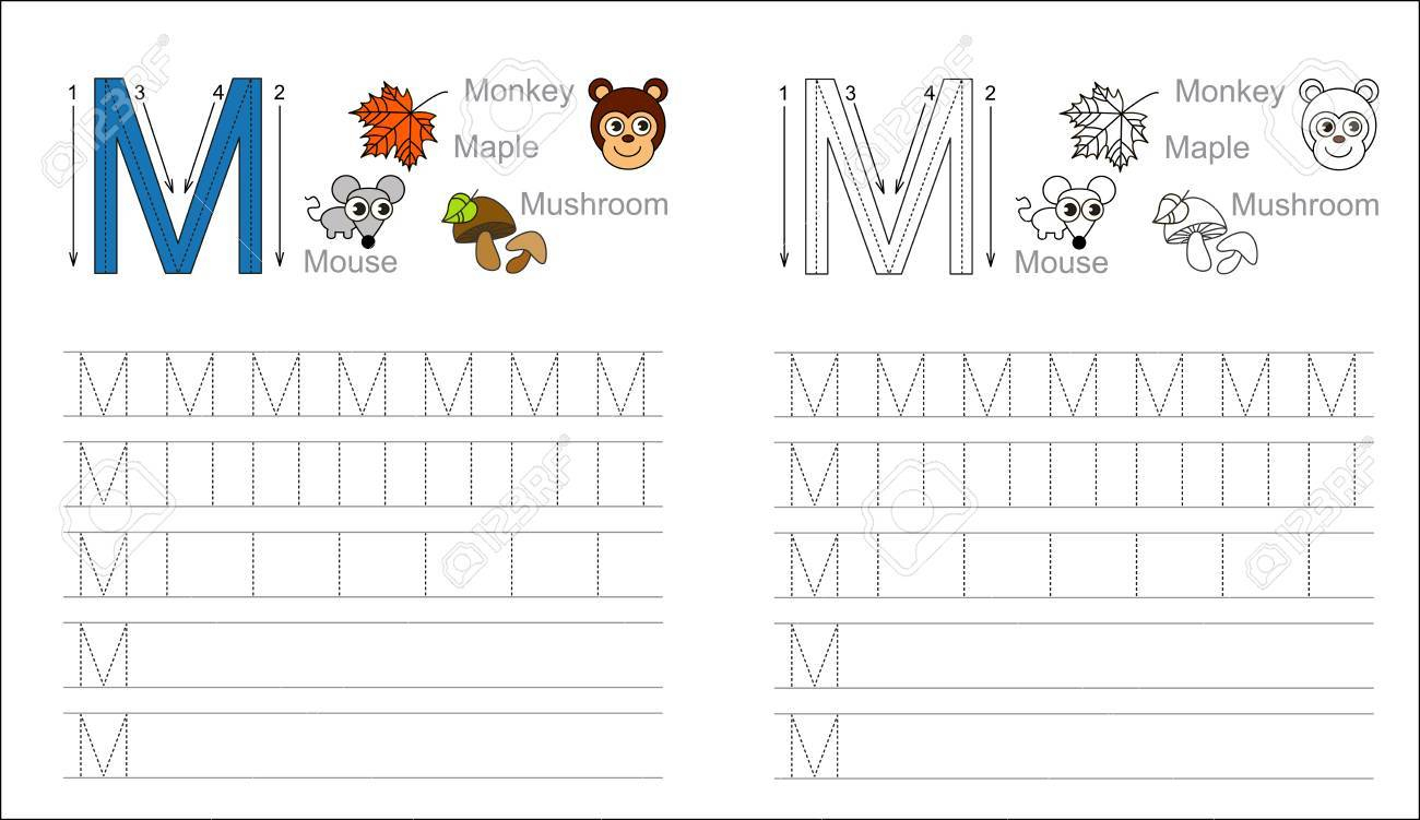 Vector Exercise Illustrated Alphabet. Learn Handwriting. Page.. with regard to Letter M Tracing Page