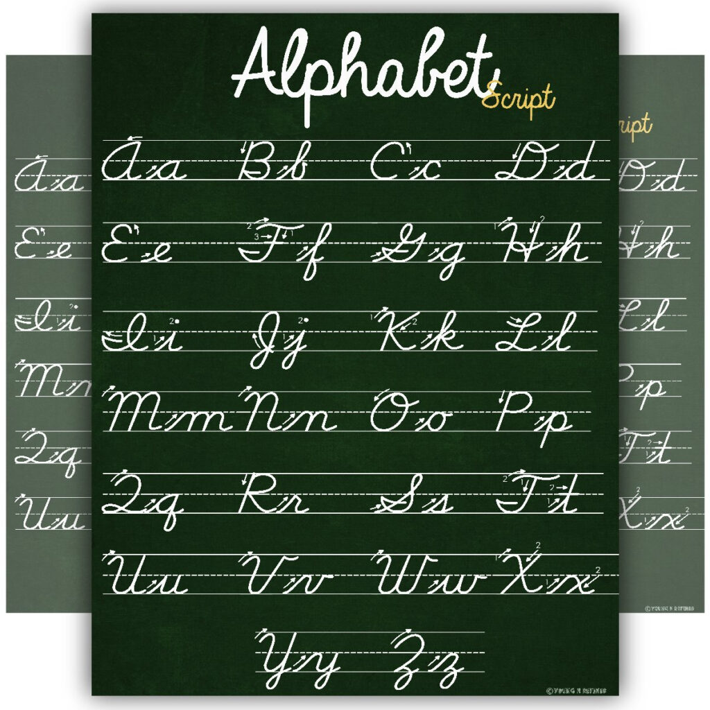 Abc Cursive Script Alphabet Poster Size Small Chart Laminated Teaching  Classroom Decoration Young N Refined   Walmart
