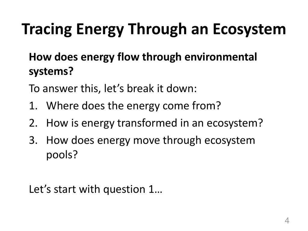 Ecosystems Unit Activity 3.5 Tracing Energy Through An