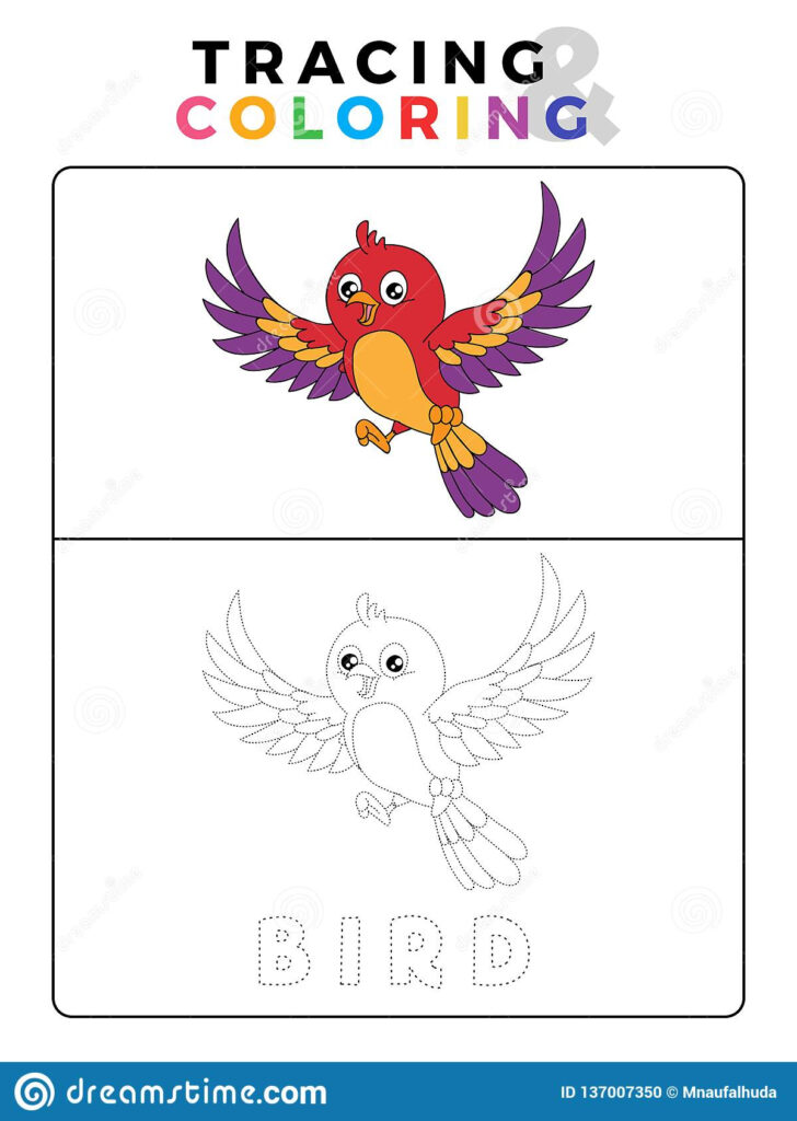 Funny Bird Tracing And Coloring Book With Example. Preschool