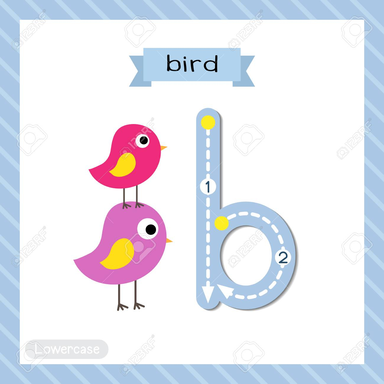 Letter B Lowercase Cute Children Colorful Zoo And Animals Abc.. for Alphabet Tracing Flashcards