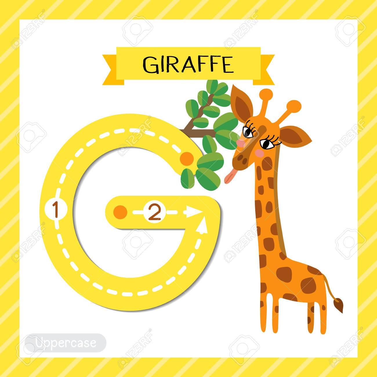 Letter G Uppercase Cute Children Colorful Zoo And Animals Abc.. intended for Alphabet Tracing Flashcards