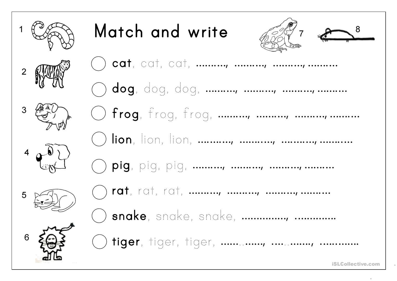 Matching, Letter Tracing, Writing - Animals - English Esl