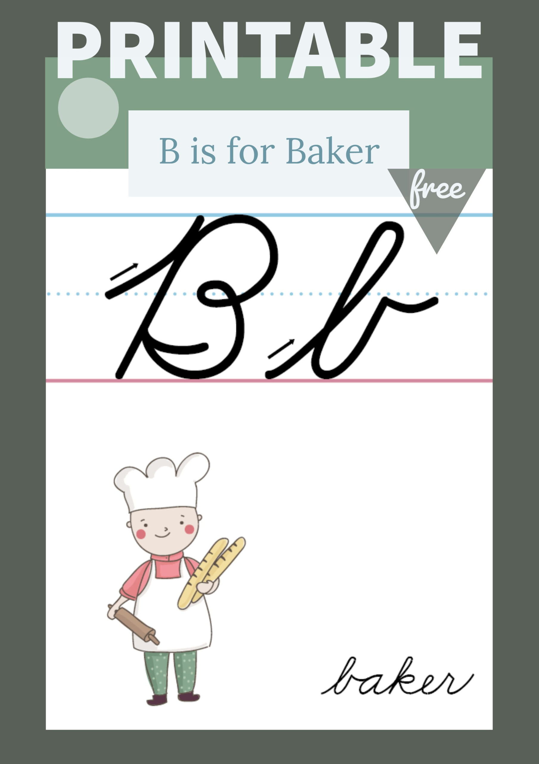 The Letter B In Cursive- Printable Poster | Primarylearning