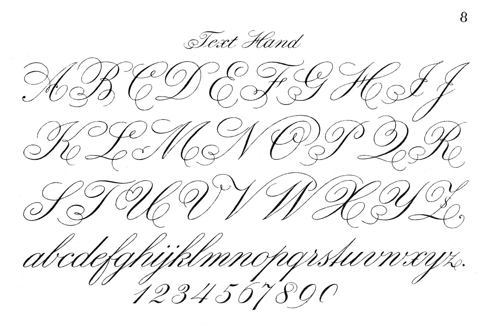 Typography Printable - Fancy Script - Monograms - The