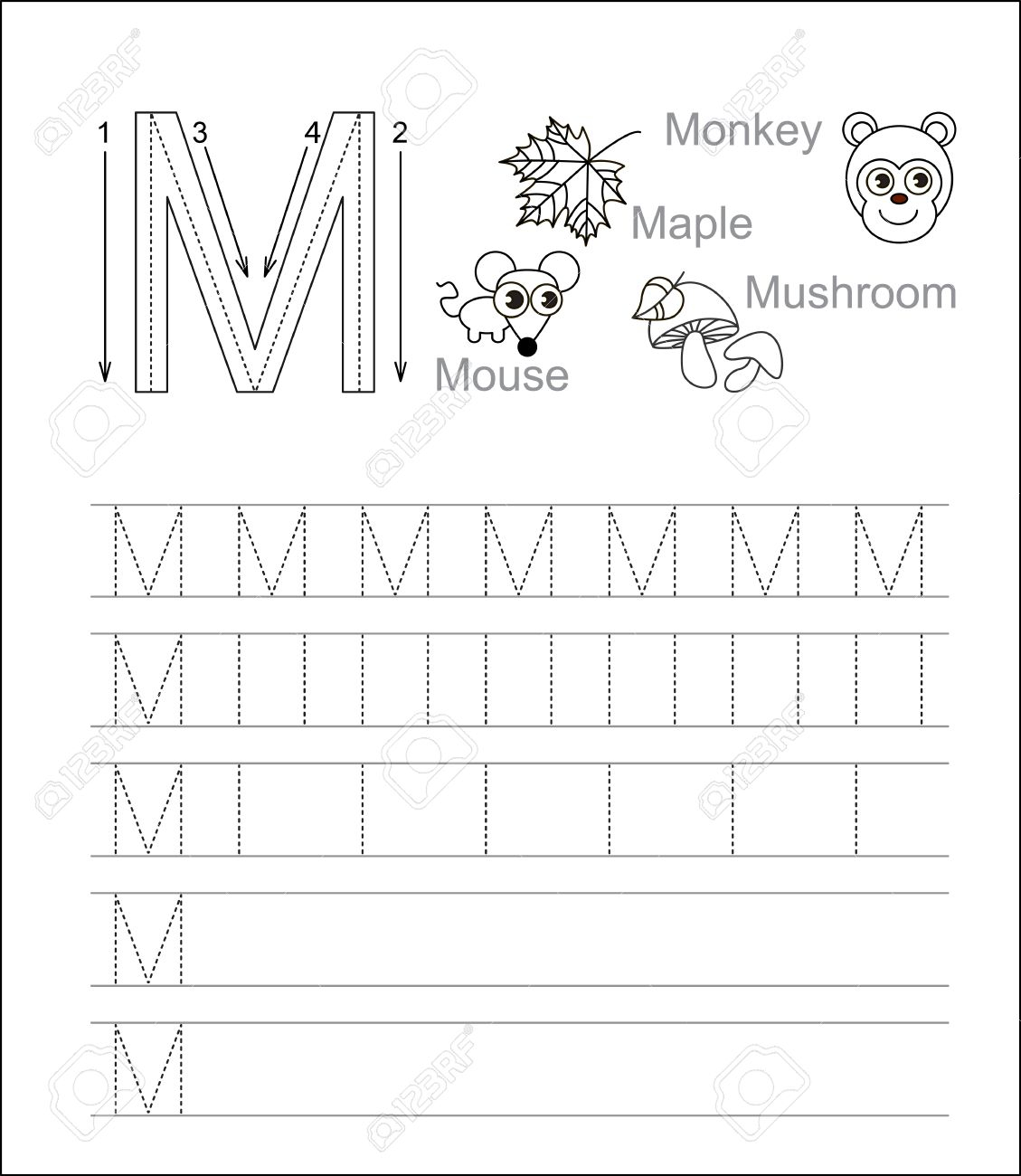 Vector Exercise Illustrated Alphabet. Learn Handwriting. Tracing.. throughout Alphabet M Tracing