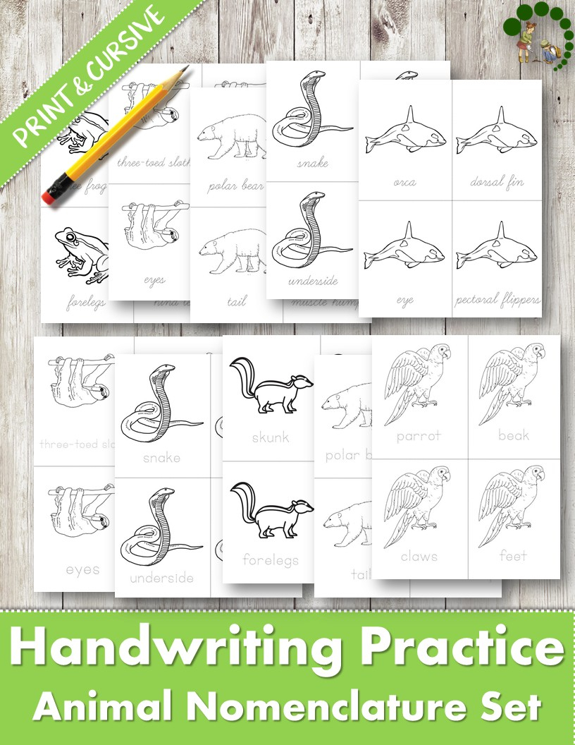 Worksheet ~ Handwriting Practice For Children Montessori
