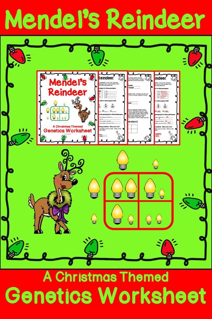 Christmas Science - Genetics Worksheet | Christmas Science