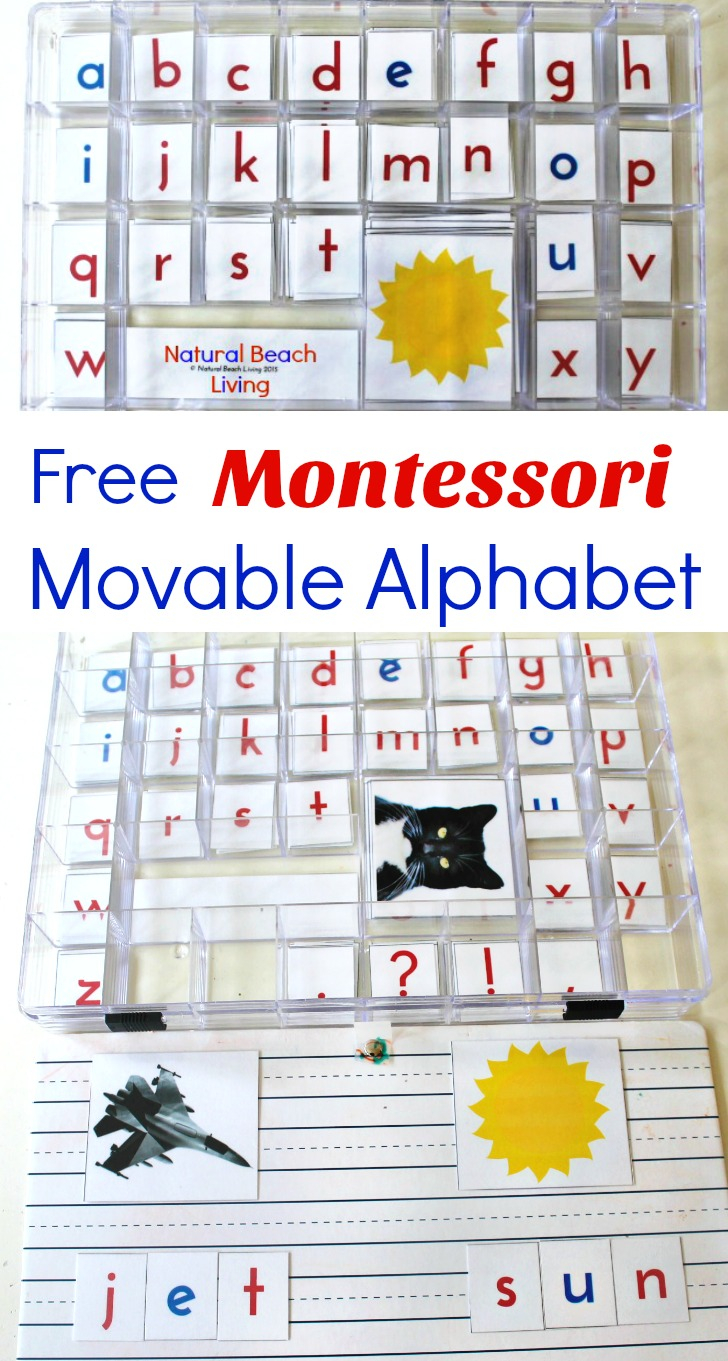 Diy Montessori Movable Alphabet (Free Printables) - Natural