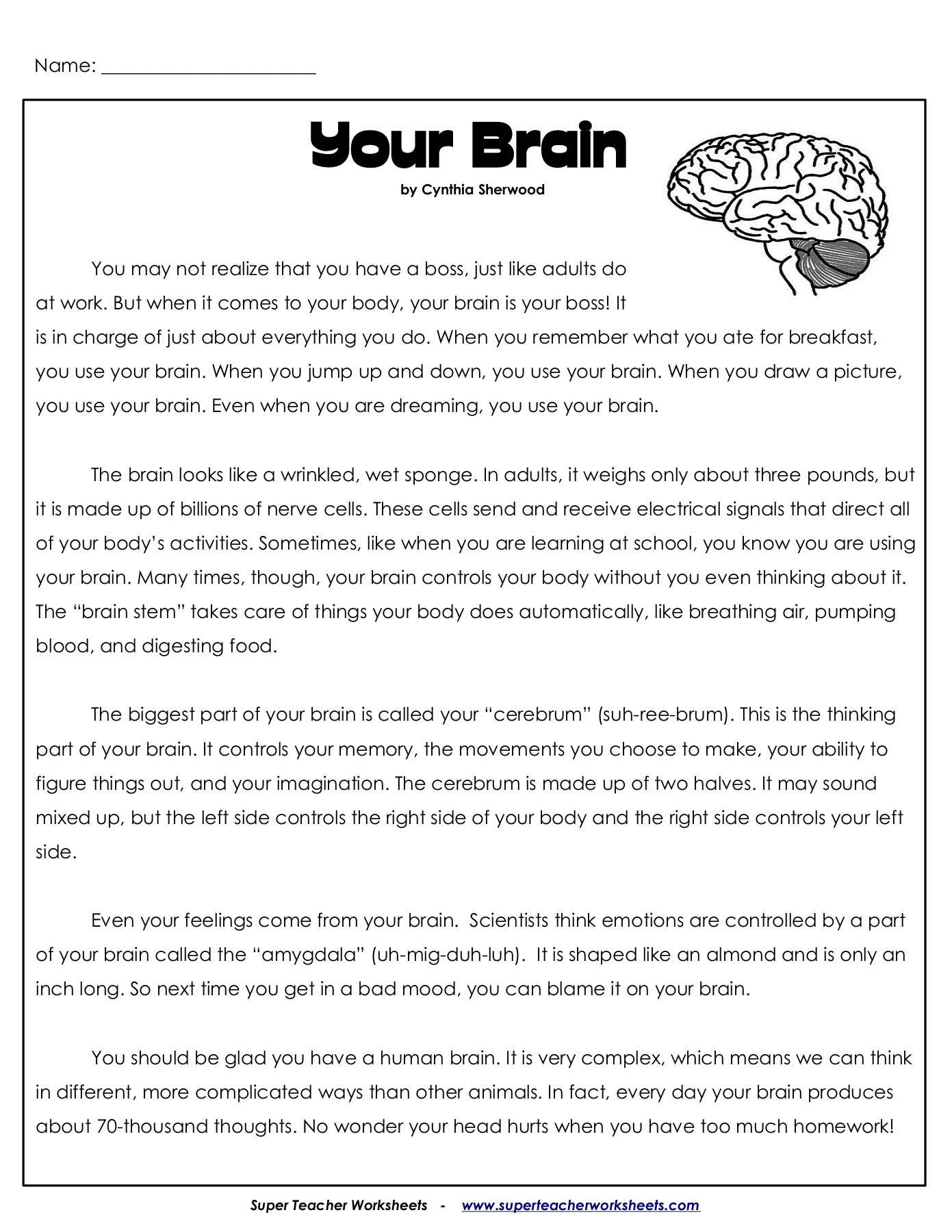 For 5Th Grade Cbt Child Anxiety Worksheets Human Body Super