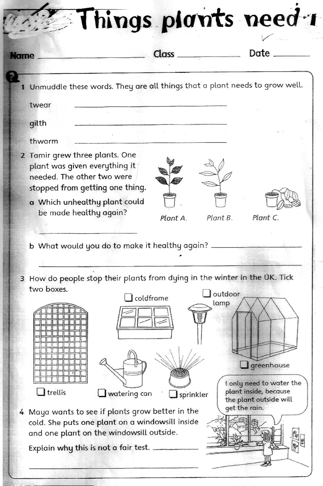 Free 3Rd Grade Science Worksheets Printable And Plant For