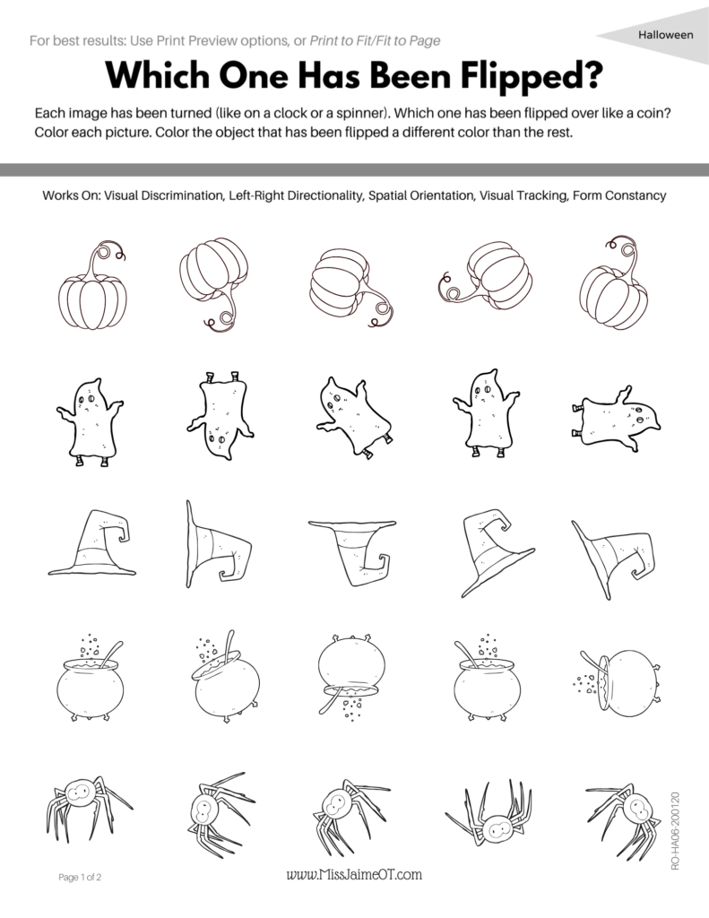 Functional Visual Perception Digital Workbook