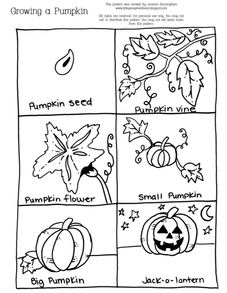 Growing+A+Pumpkin 1,236×1,600 Pixels   Preschool
