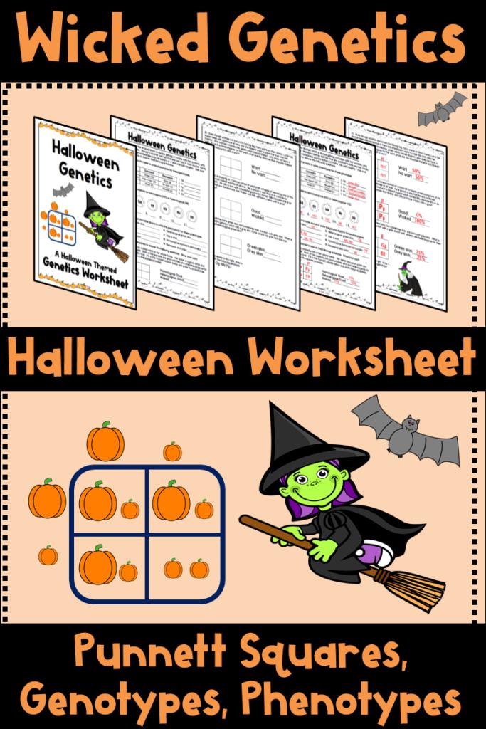 Halloween Punnett Squares Worksheet (Genetics, Genotype