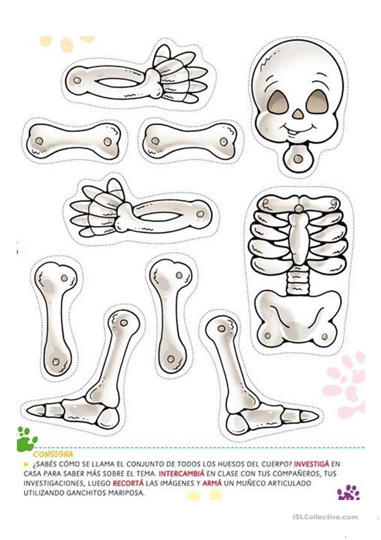 Halloween Skeleton - English Esl Worksheets For Distance