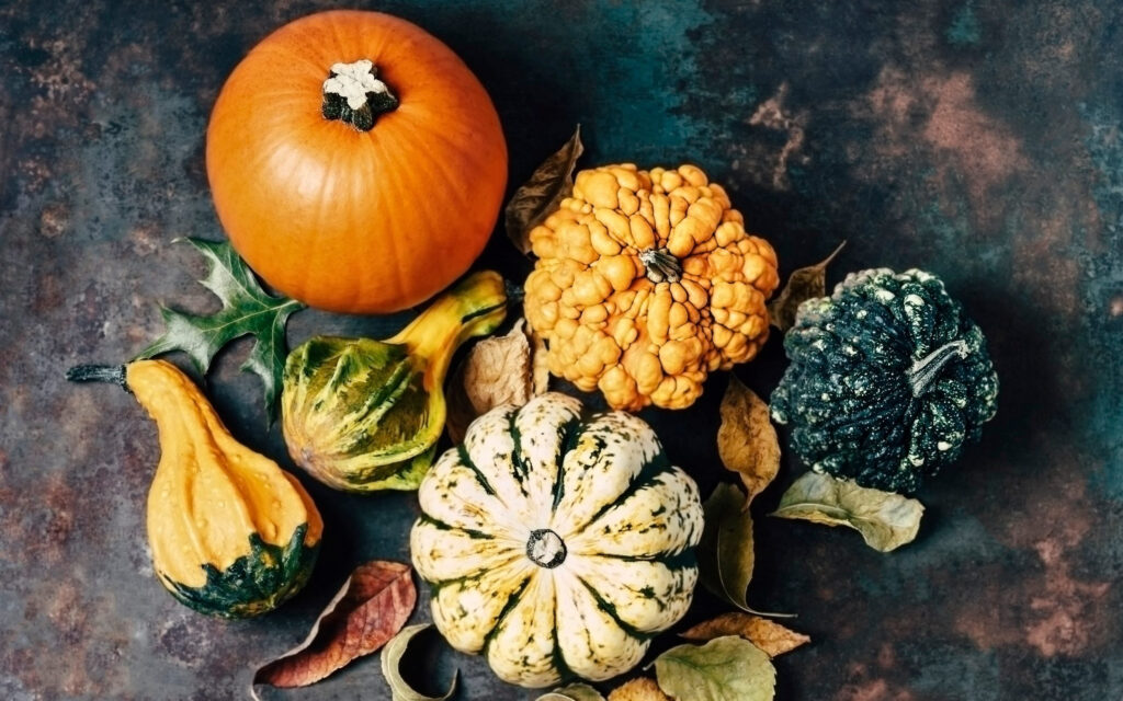 How To Grow And Carve Halloween Pumpkins   The Telegraph