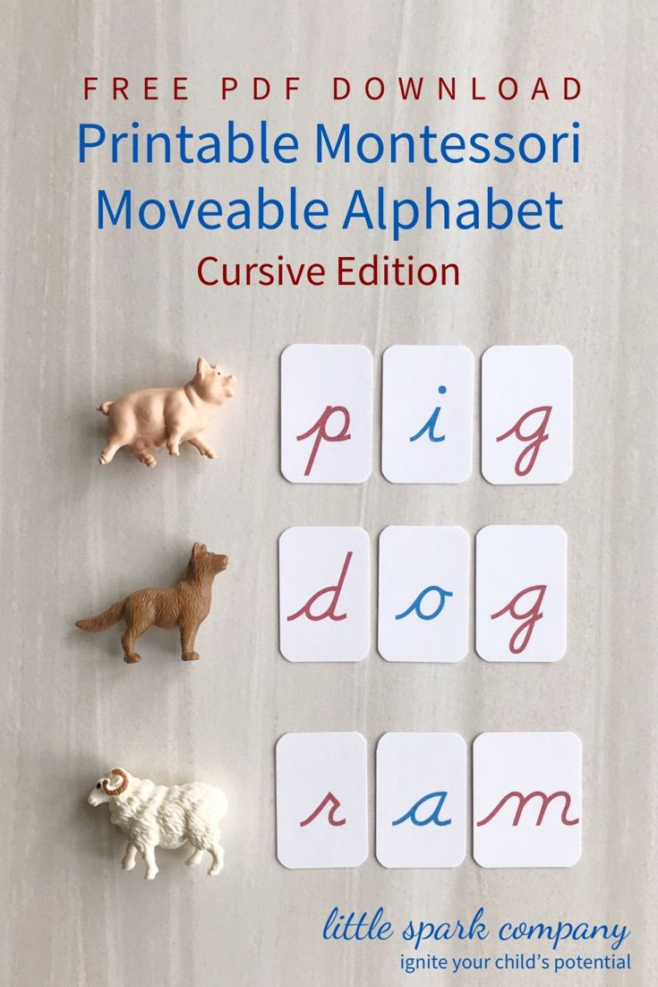 Montessori Moveable Alphabet Cursive Free Download In 2020