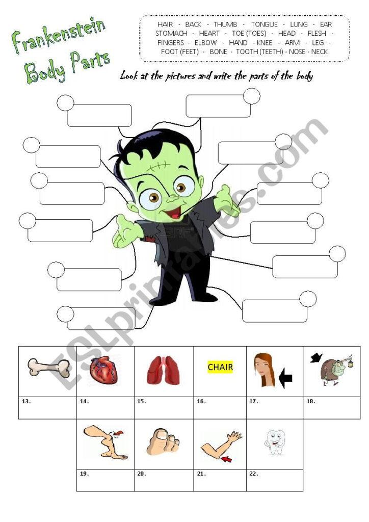 Parts Of The Body   Halloween   Esl Worksheetbucky2406