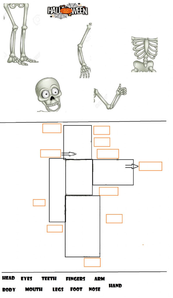 Parts Of The Body   Halloween! Worksheet
