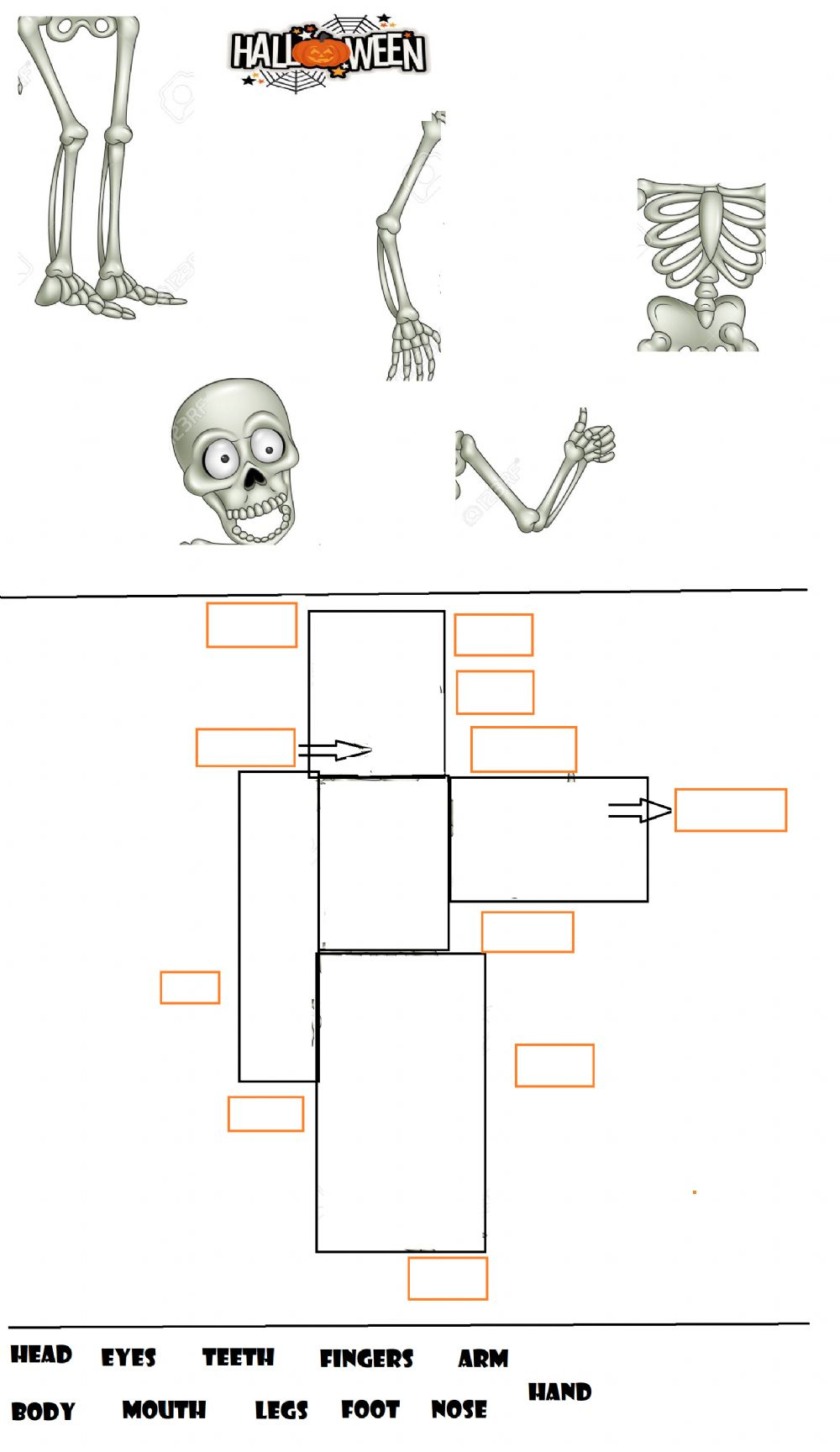 Parts Of The Body - Halloween! Worksheet