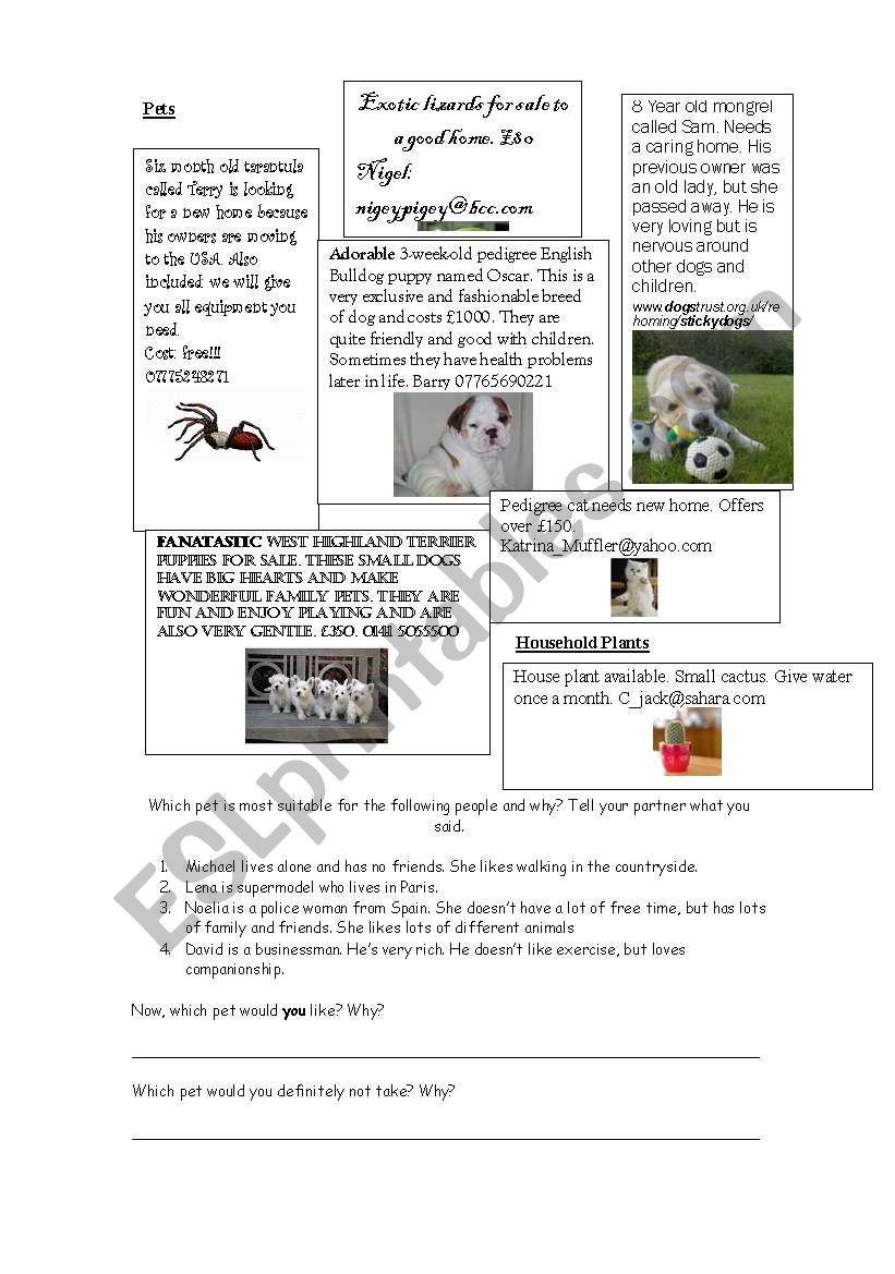 Pet Adverts - Reading And Conversation Practice - Esl