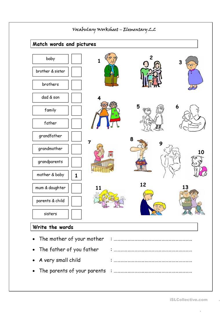 Vocabulary Matching Worksheet Elementary Family English