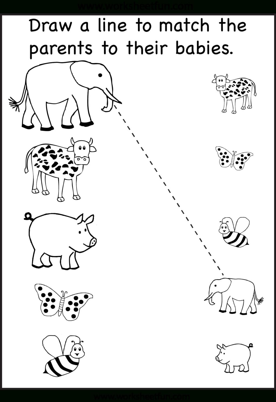 Worksheet ~ Worksheet Baby Animal Matching Worksheet 191179