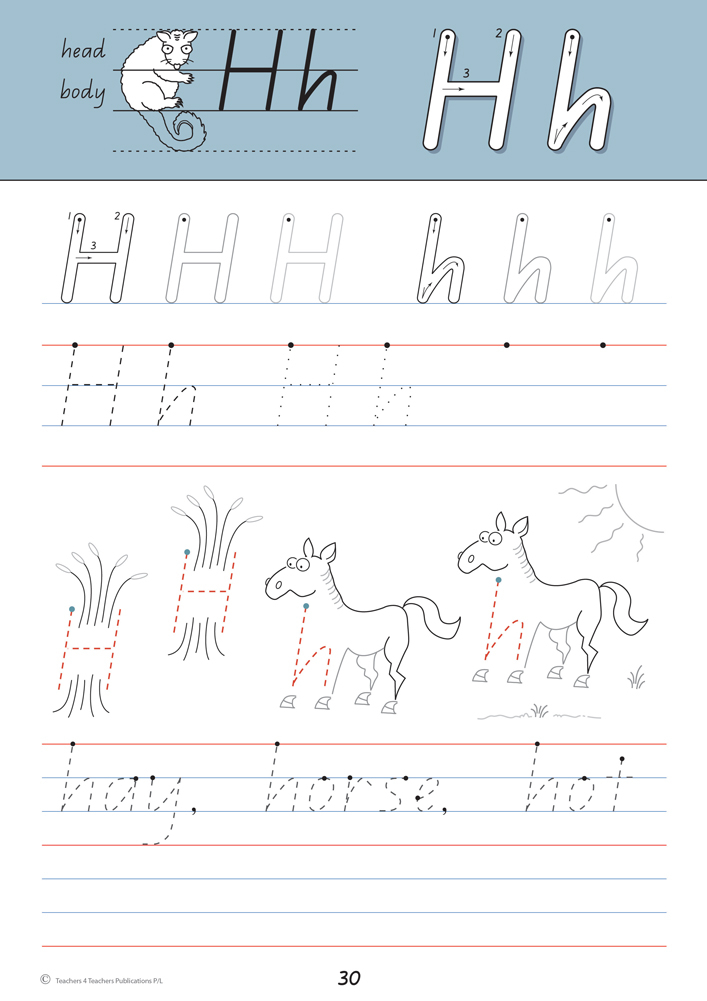 Handwriting Conventions QLD Year 1 Teachers 4