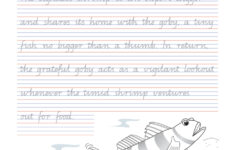 Handwriting Conventions QLD Year 5 Teachers 4