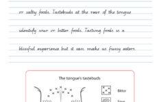 Handwriting Conventions QLD Year 6 Teachers 4