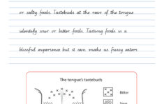 Handwriting Conventions QLD Year 6 Teachers 4